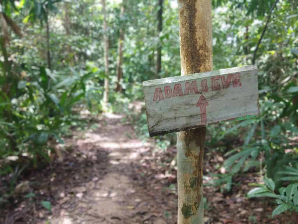 Hiking route in Perhentian Kecil.