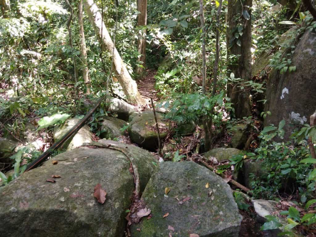 Jungle trekking route in Perhentian Besar island.