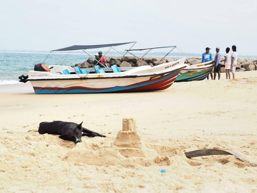 Kalpitiya-beach-Sri-Lanka-Travel-Mermaid