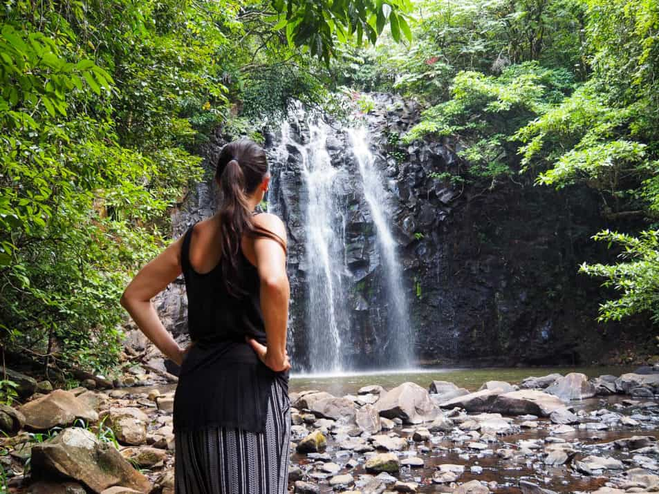 Waterfall-Circuit-Atherton-Tablelands-North-Queensland-Australia ] Travel Mermaid