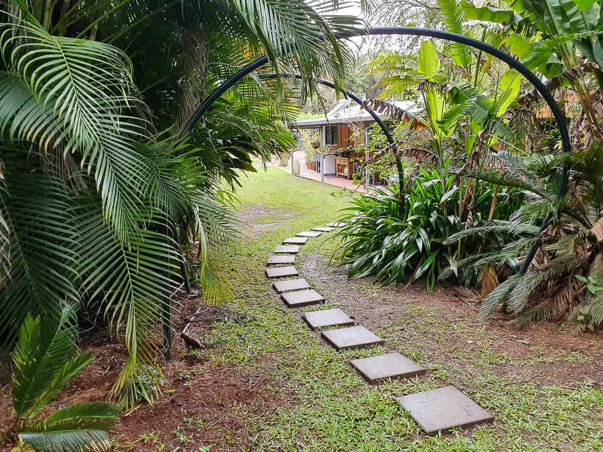 Cairns-Tropical- Hinterland-Atherton-Tablelands-Queensland-Australia-1 ] Travel Mermaid