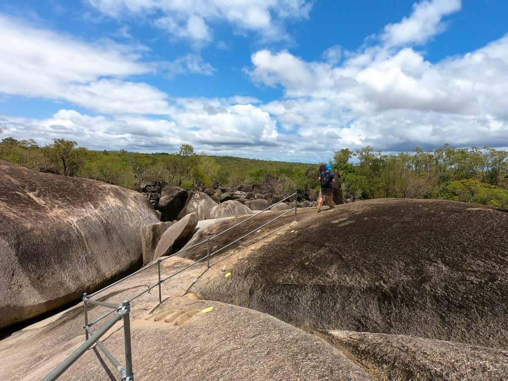 Granite-Gorge-Wallabies-Atherton-Tablelands-North-Queensland-Australia ] Travel Mermaid 259