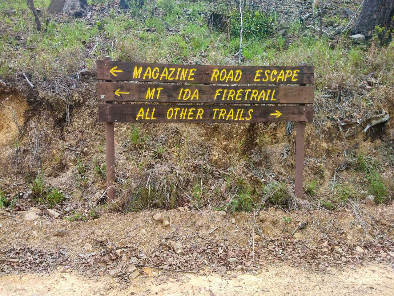 Mt Ida Firetrail in Atherton, Far North Queensland // Travel Mermaid